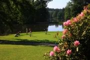 Golf Stirin - kvetiny