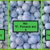 Hrané golfové míčky mix značek již od 6,5 Kč / ks - 3 varianty