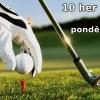 37 top golfových hřišť - 10 her za měsíc až do konce roku - jen 13190 Kč