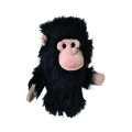 Daphne's headcover šimpanz