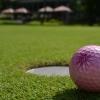 Intenzivní golfový kurz Praha i Brno + závěrečná zkouška - 12x 50min, včetně vstupů a míčů. Tip na dárek za 3690 Kč!