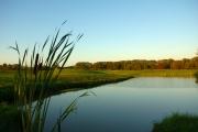 Kotlina Terezín golf green fee akce 3
