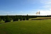 golf-cinovec-green