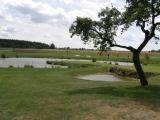 Golf Alfredov panorama